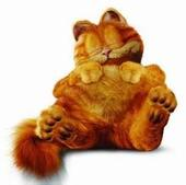 Do you have puffy eyes like Garfield?