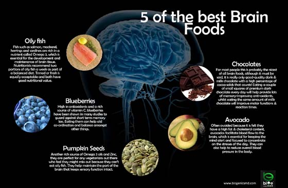 Best 5 Food for brain