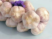 Garlic can help to heal vaginitis