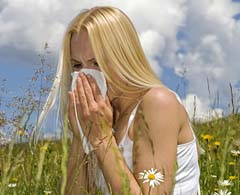 Hay fever symptoms